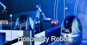 Service Robot for Hotels
